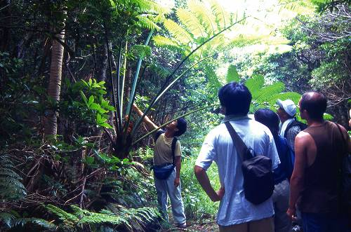 074_hiking.jpg