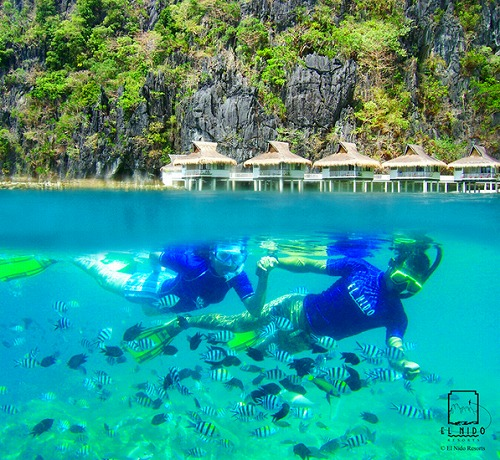 Miniloc%20-%20Snorkeling%20with%20Sgt%20Majors%20in%20front%20of%20Miniloc.jpg
